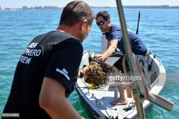 Diving captain for US NonGovernmental Organisation Sea Shepherd Manu receives and shows a fishing net found in the Coulombray area near...
