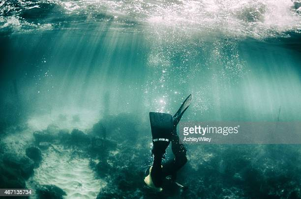 Diving down, a diver goes to the sea floor