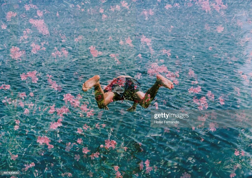 Diving into Pink Flowers : Stock Photo