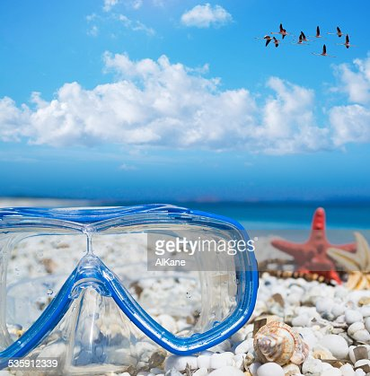 diving mask and starfish under a flock of flamingos : Stock Photo