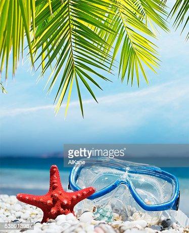Máscara de buceo bajo las palmeras : Foto de stock