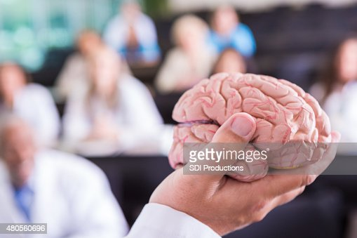Doctor holding brain model while speaking at health care conference : Stock Photo