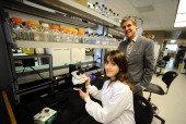 TORONTO ON NOVEMBER 15 Doctor Michael Fehlings and Doctor Crystal Ruff in the neuroscience lab as we are Taking a look at the Toronto Western...