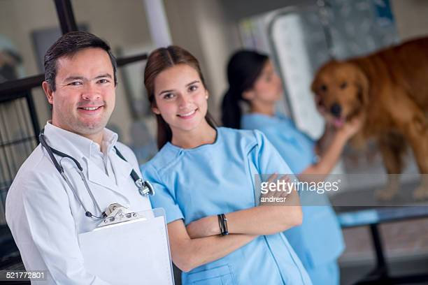 Doctors at the vet