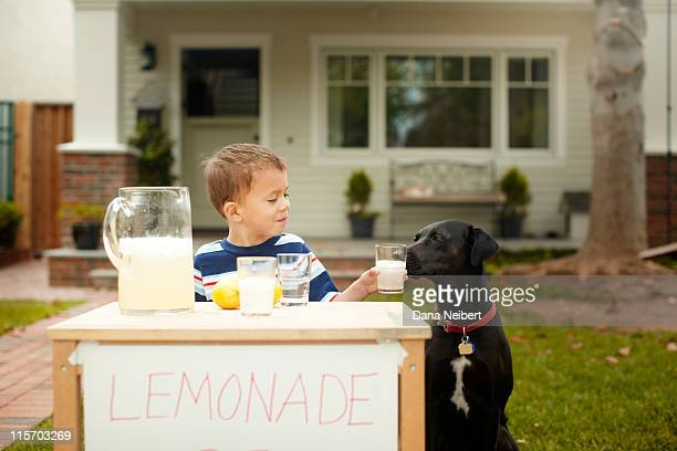 Dog and boy at lemonade stand