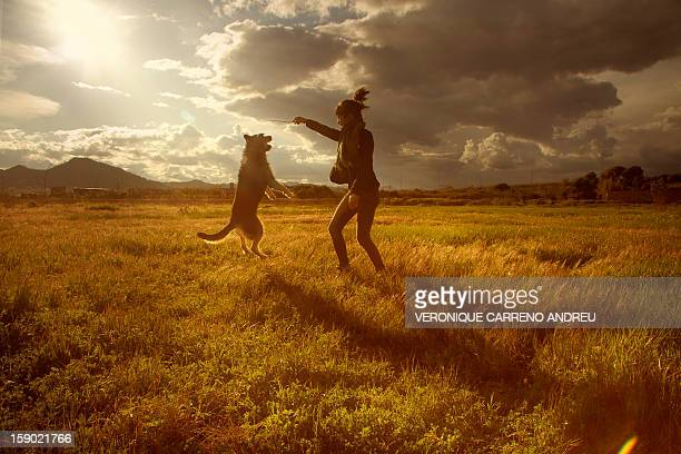 Dog and girl jump in the sunset
