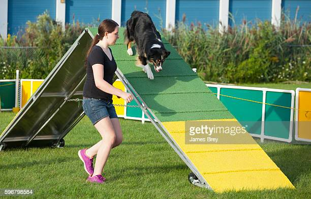 Dog and handler working together in agility competition, the a-frame.