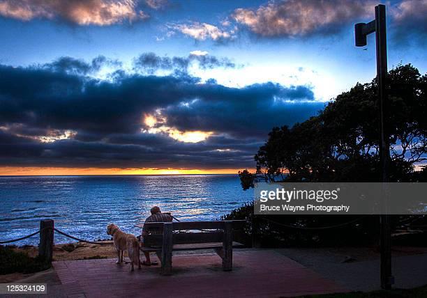 Dog and his master looking at sea