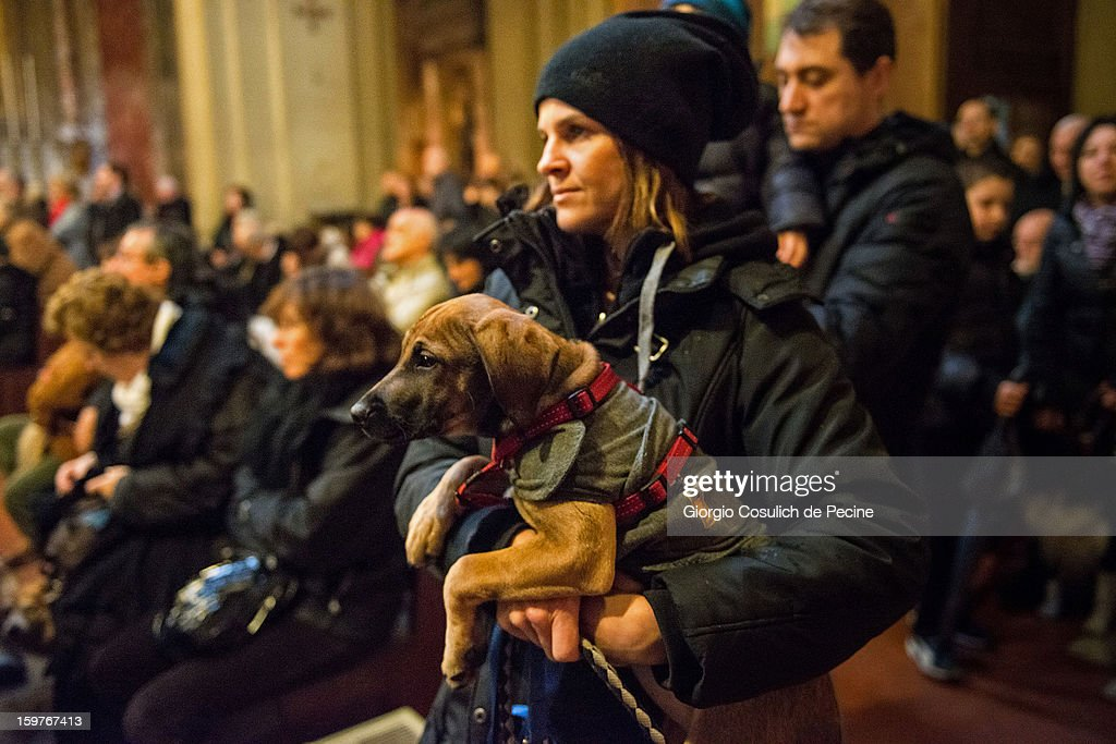 A dog and its owner attend a traditional mass for the blessing of animals at the Sant'Eusebio church on January 20, 2013 in Rome, Italy. Every year during the feast of St. Anthony the Abbot animals are blessed in countries around the world.