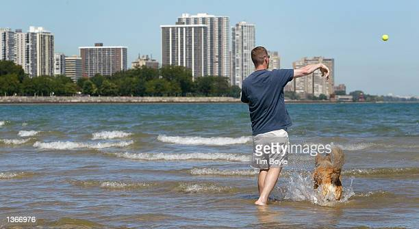 A dog and its owner play on Montrose Beach along Lake Michigan September 4 2002 in Chicago A new Chicago Park District ordinance allows owners to let...