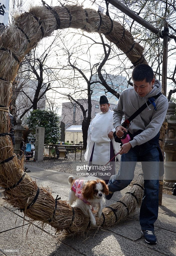 A dog and its owner walk through a sacred straw ring as a Shinto priest (C) looks on before a purification ceremony for pets, at the Ichigaya Kamegaoka-Hachiman shrine in Tokyo on January 13, 2013. Some 500 pets and their owners visit at the shrine to celebrate for the New Yaer and pray for their animal's health and happiness. AFP PHOTO / Yoshikazu TSUNO