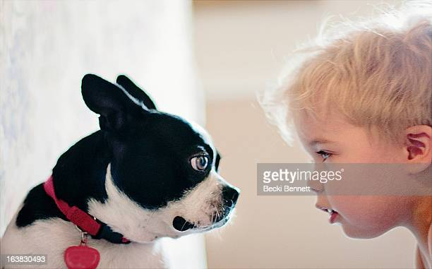 Dog and Toddler boy staring at eachother