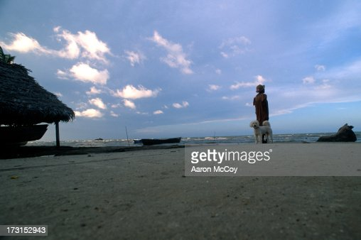 Dog and woman : Stock Photo
