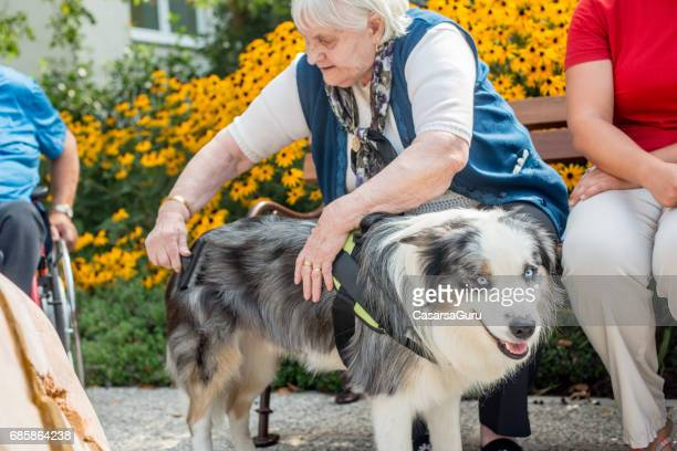 Dog As Emotional Support Animal For Seniors In The Nursing Home