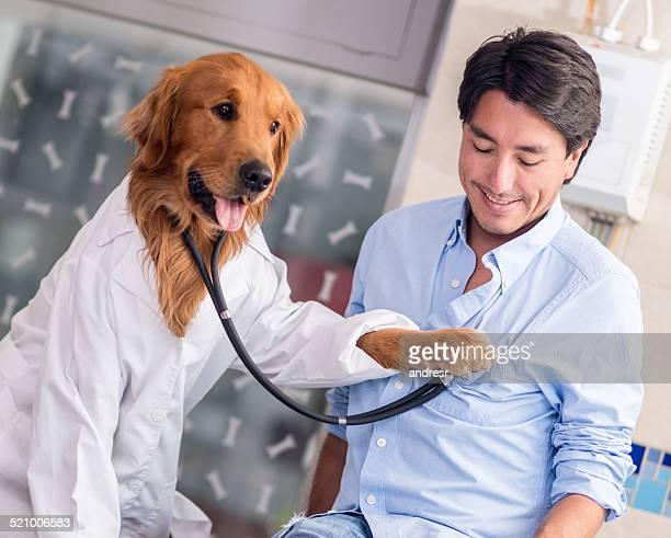 Hund an der Tierarzt