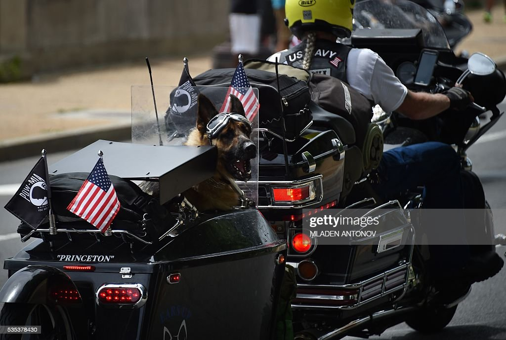 A dog barks from a motorbike during the annual Rolling Thunder 'Ride for Freedom' parade ahead of Memorial Day in Washington, DC, on May 29, 2016. / AFP / MLADEN