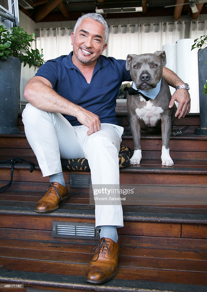 Dog behaviorist Cesar Millan attends the celebration for Season 2 of 'Cesar 911' on Nat Geo Wild at SkyBar at the Mondrian Los Angeles on March 13...