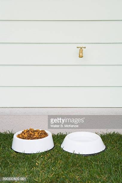 Dog bowl with food outside house