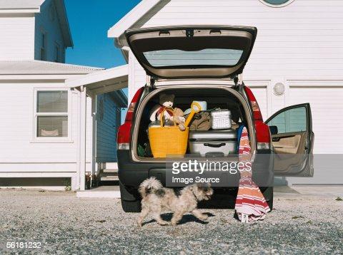 Dog by car full of luggage