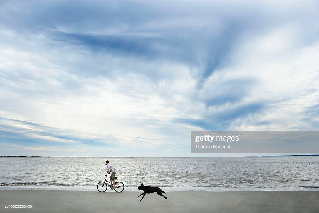 Dog chasing after boy (14-15) riding bike along beach, side view