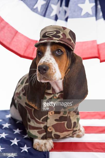 Dog Face Soldier