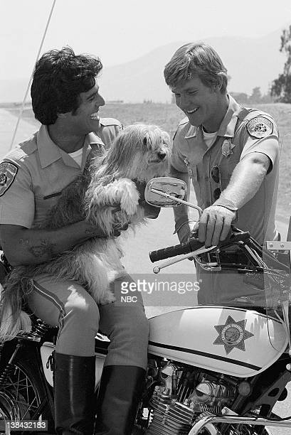 CHIPS 'Dog Gone' Episode 3 Air Date Pictured Erik Estrada as Officer Francis Llewellyn 'Ponch' Poncherello Muffin as Fido Larry Wilcox as Officer Jon...