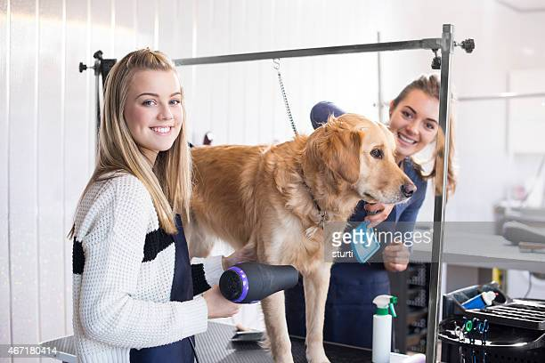 Dog grooming salon girls happy in their work