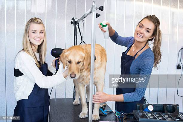 Dog grooming salon girls happy in their work