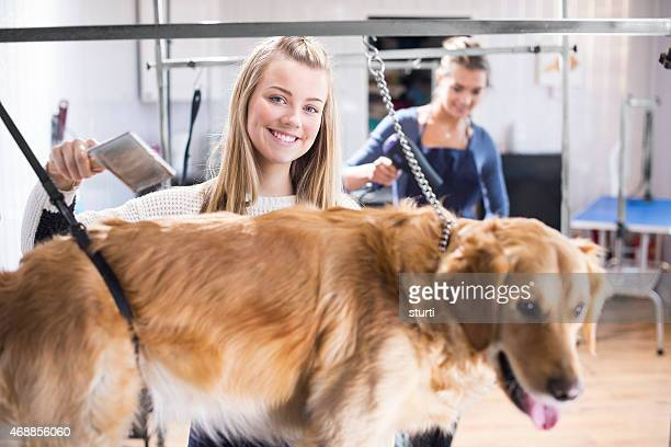 Dog grooming salon workers