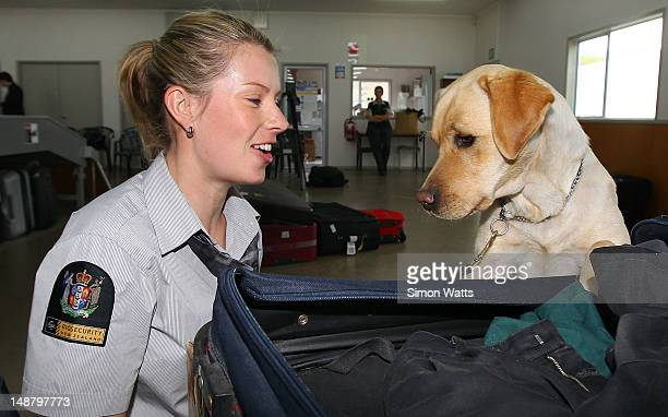 Dog Handler Courtney Moore with dog Shyann during the graduation of detector dogs at Auckland International Airport on July 20 2012 in Auckland New...
