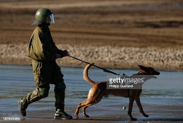 A dog handler of the German military Police advances during the annual military exercises held for the media at the Bergen military training grounds...
