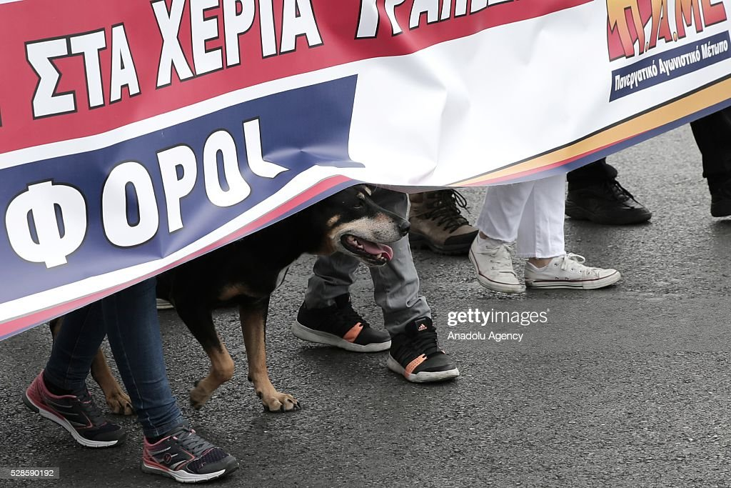 A dog is seen under a banner during a general strike, against the reform packages including austerity policies in Athens, Greece on May 6, 2016.