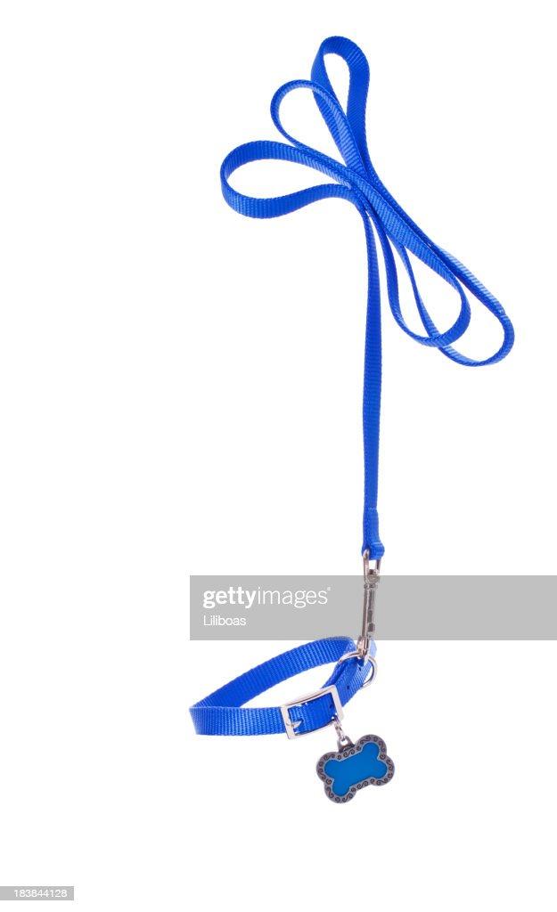 Dog Leash and Collar