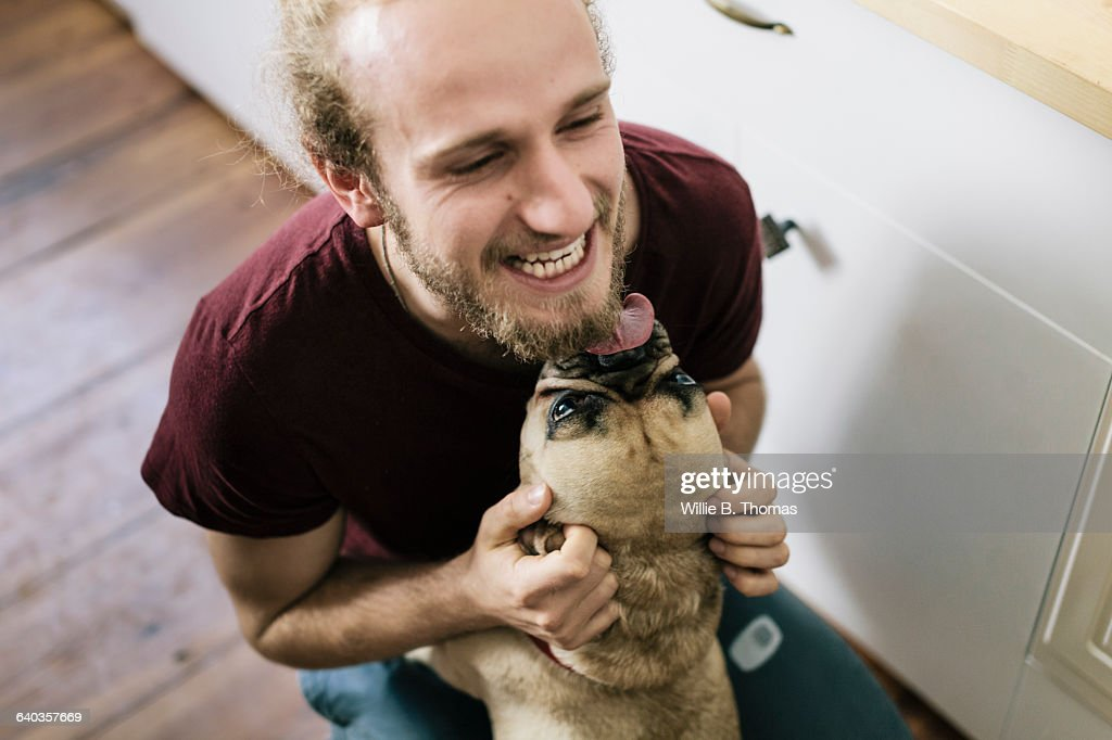 Dog licking face of owner : Stock Photo