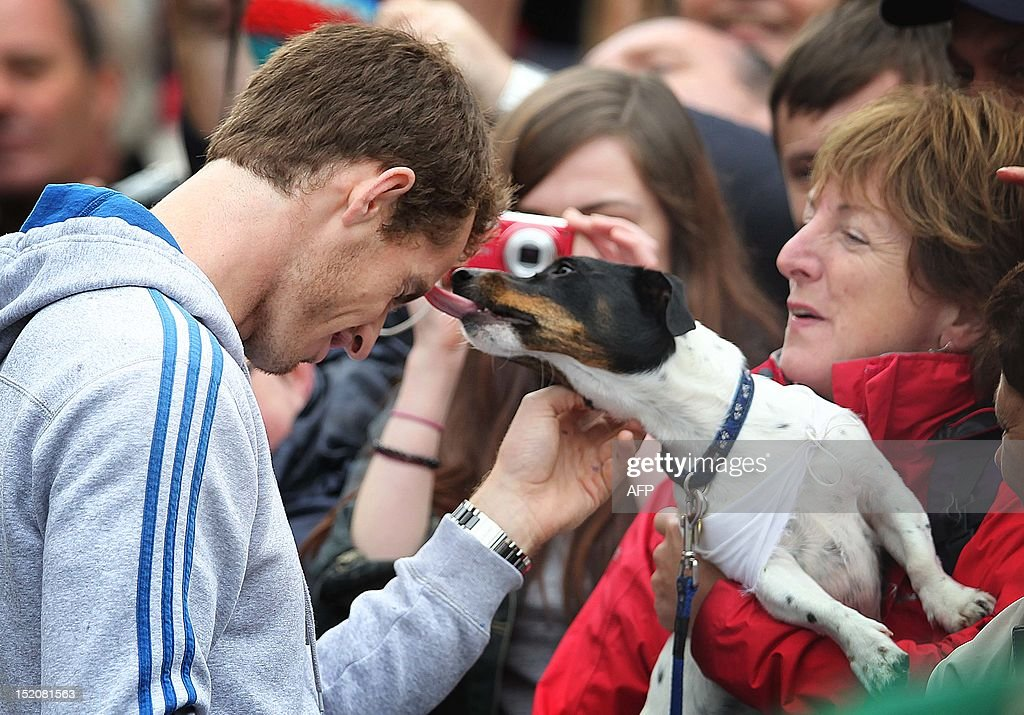 A dog licks British tennis player Andy Murray (L) as he meets with fans in the centre of Dunblane, Scotland on September 16, 2012, following his victory in the US Open tennis tournament and gold medal in the London 2012 Olympic Games. Andy Murray, the first British man to win a Grand Slam title in 76 years, received a rapturous welcome in his Scottish home town on Sunday, but admitted that his golden summer was giving him nightmares. AFP PHOTO / IAN MACNICOL