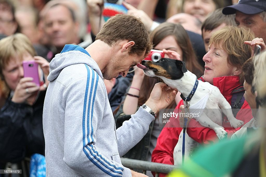 A dog licks British tennis player Andy Murray (L) as he meets with fans in the centre of Dunblane, Scotland on September 16, 2012, following his victory in the US Open tennis tournament and gold medal in the London 2012 Olympic Games. Andy Murray, the first British man to win a Grand Slam title in 76 years, received a rapturous welcome in his Scottish home town on Sunday, but admitted that his golden summer was giving him nightmares.