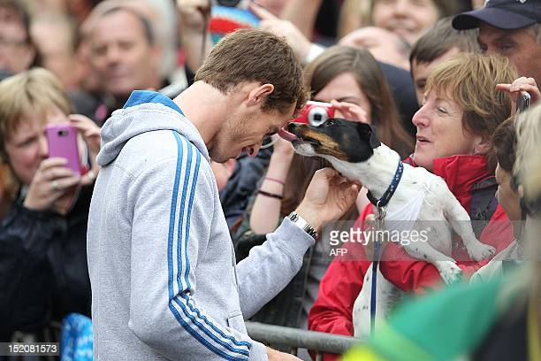 A dog licks British tennis player Andy Murray as he meets with fans in the centre of Dunblane Scotland on September 16 following his victory in the...