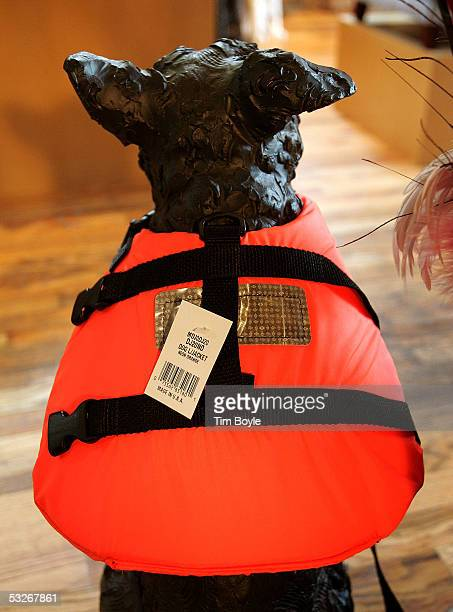 A dog lifejacket is displayed in the cats and dogs health food store 'For Dog's Sake' July 21 2005 in Chicago Illinois According to a recent survey...