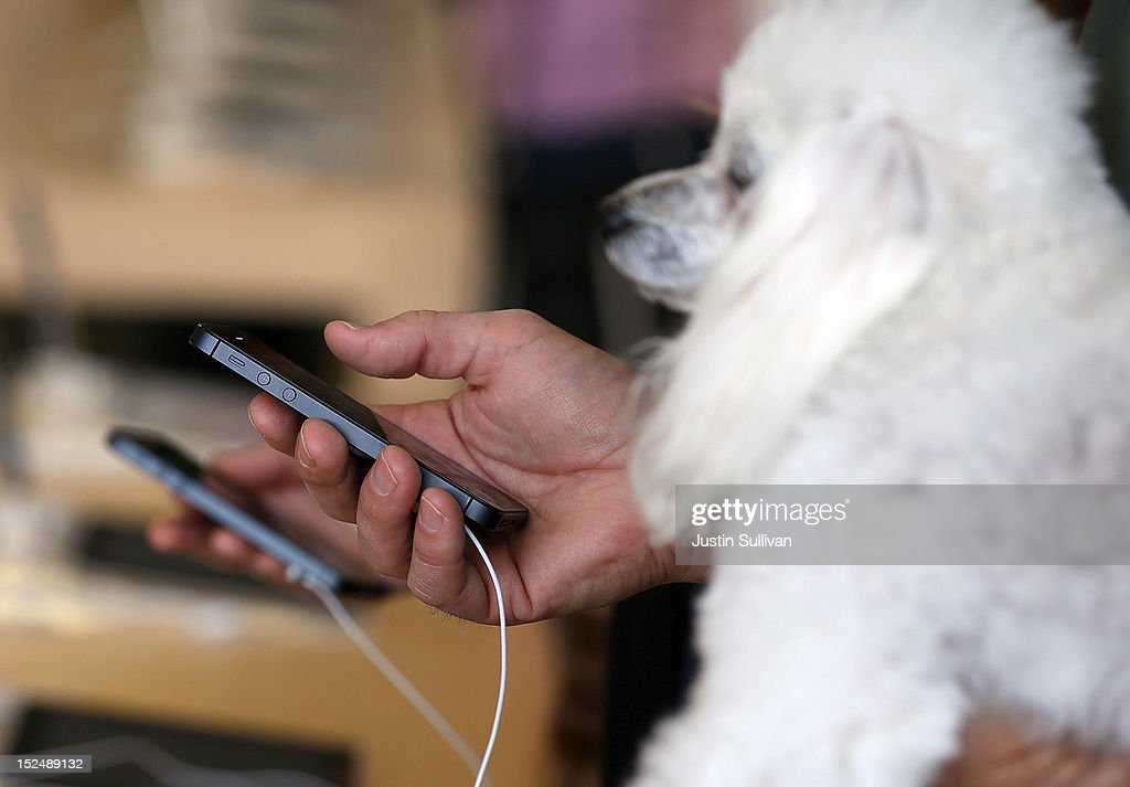 A dog looks on as customers inspect the new iPhone 5 at an Apple Store on September 21, 2012 in San Francisco, California. Customers flocked to Apple Stores across the U.S. to purchase the hotly anticipated iPhone 5 which went on sale nationwide today.