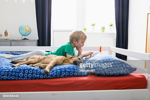 Dog Lying On Bed With Boy Using Digital Tablet Stock Photo