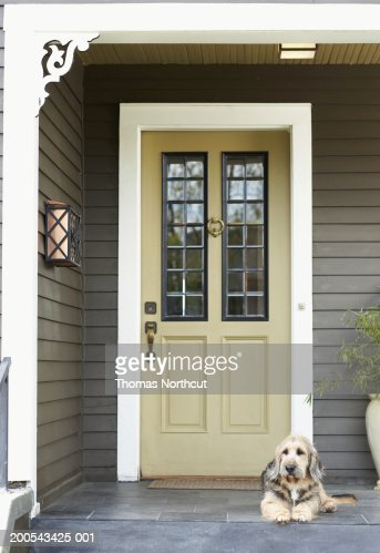 Dog lying on front porch
