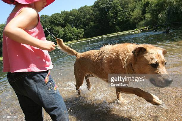 A dog named Sheba runs out of a duck pond in Prospect Park September 2 2007 in the Brooklyn borough of New York City Near perfect weather conditions...