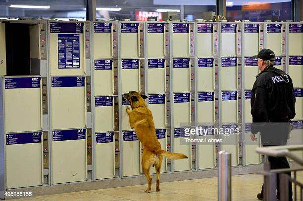 A dog of the Ferderal Police trained in explosive substance bays a locker at the main railway station on May 27 2014 in Mainz Germany During...