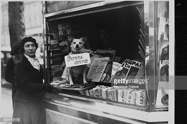 Dog Of The Newsagent Wishing A Happy New Year In Paris