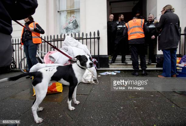 A dog outside the pound15 million Grade II listed mansion on Belgrave Place London which has been squatted by the Autonomous Nation of Anarchist...
