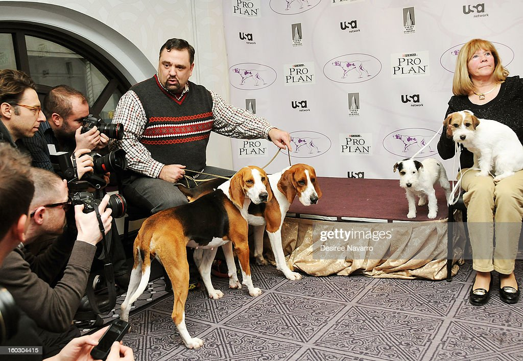 Dog owner Curt Willis and his Treeing Walker Coonhound dogs (L) 'Meg' and 'Tank' meet Dog owner (R) Sue Sobel and her Russell Terrier dogs (C) Pepper and (R) 'Madison' at The Westminster Kennel Club 137th Annual Dog Show - Press Conference at Affinia on January 28, 2013 in New York City.