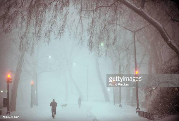 Dog owners and runners go through heavy snow fall and strong wind gusts in Central Park on January 23 2016 in New York City A major Nor'easter is...