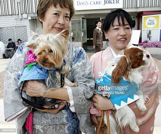Dog owners Chino Saito and Hisae Hayashi in Kimono dresses hold their dogs theer Yorkshire terrier 'Momi' and Cavalier spanier 'Maroon' during a dog...