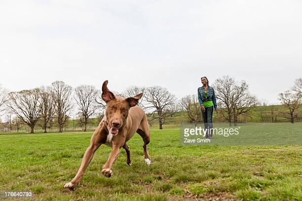 Dog running across grass