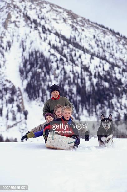 Dog running by four children (8-9) sledding